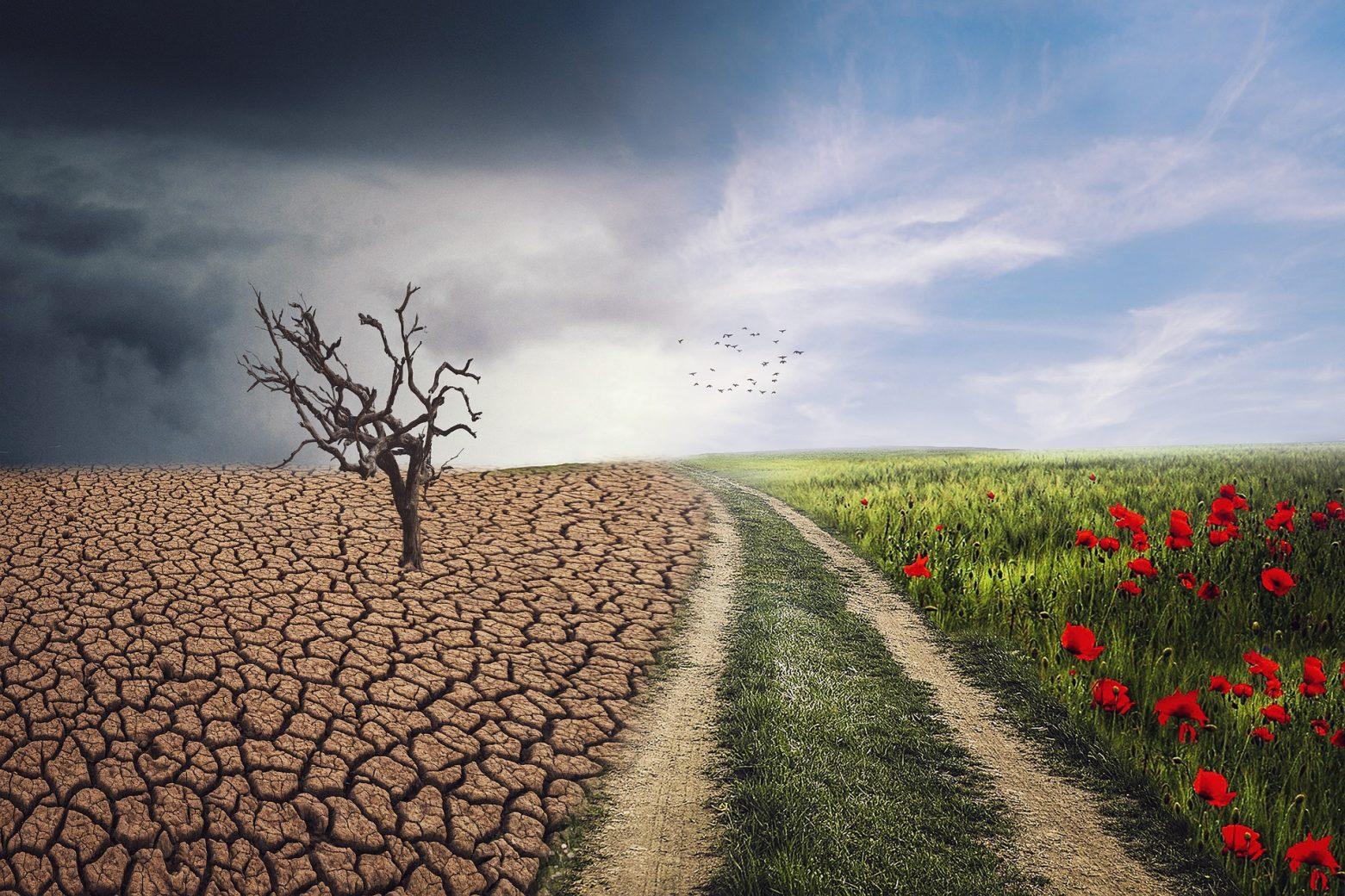 Paysage changement landscape 4684217 1920 - Avez-vous peur d'apporter des changements dans votre vie ?