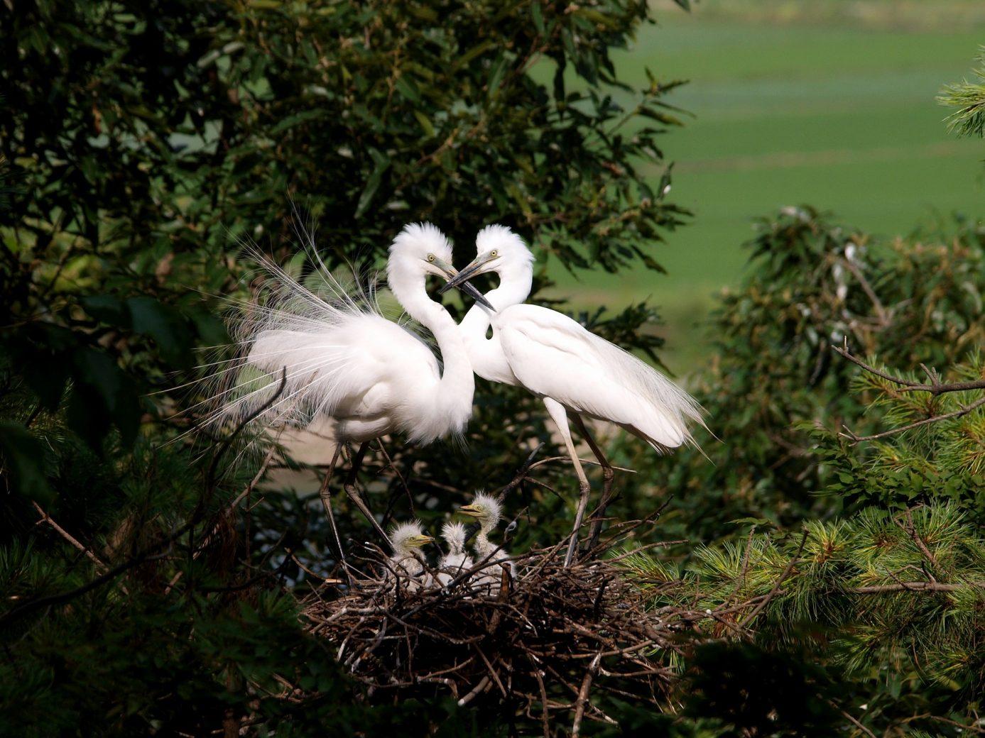 7 choses à faire pour éviter le «syndrome du nid vide»