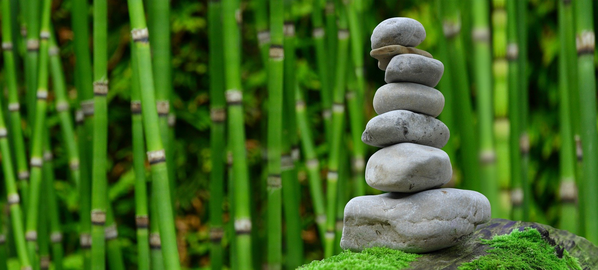Chaque semaine, 7 questions à vous poser pour votre bien-être !