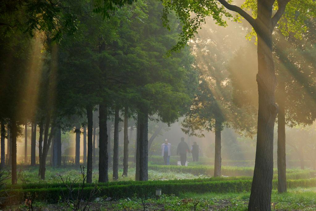 Morning Meditation photo par Trent strohm - Créativité: 5 étapes pour l'augmenter