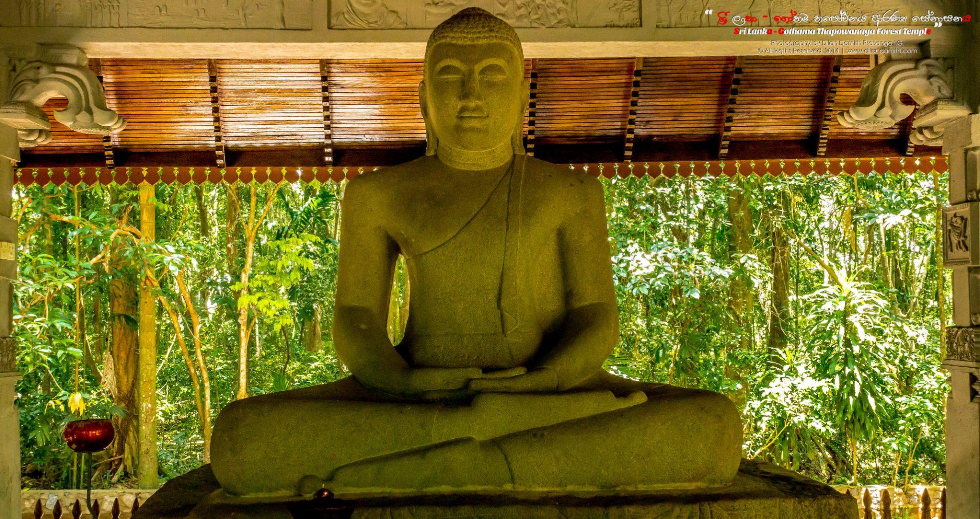 Le bouddhisme : un possible chemin  pour atteindre le bonheur