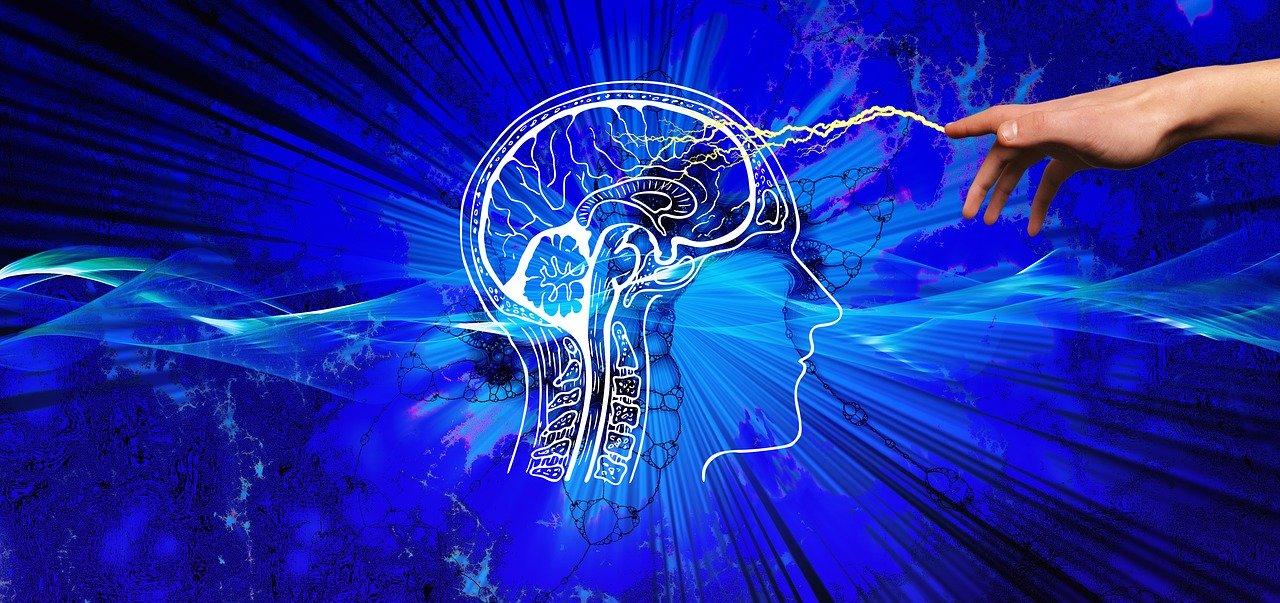 cerveau knowledge 3914811 1280 - Les 3 raisons pour lesquelles (le MBTI ) peut changer votre vie !